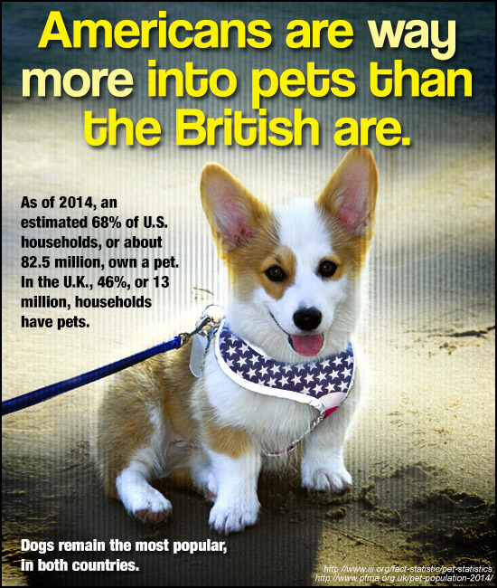 Americans are way more into pets than the British are. As of 2014, an estimated 68% of U.S. households, or about 82.5 million, own a pet. In the U.K.,