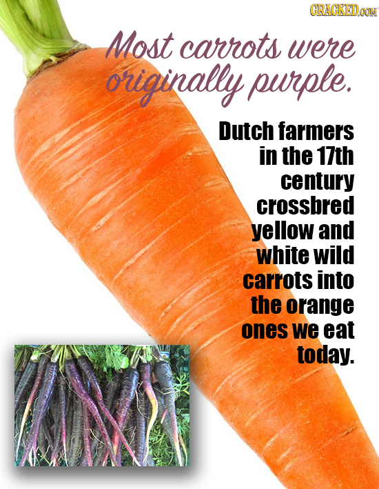 CRACKEDOOM Most carrots were originally purple. Dutch farmers in the 17th century crossbred yellow and white wild carrots into the orange ones we eat