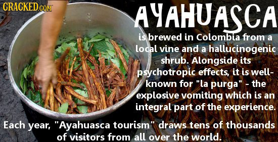 CRACKED COMT AYAHUASCA is brewed in Colombia from a local vine and a hallucinogenic shrub. Alongside its psychotropic effects, it is well- known for