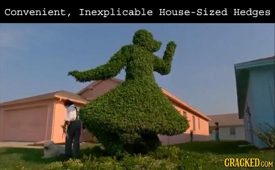Convenient, Inexplicable House-S Hedges