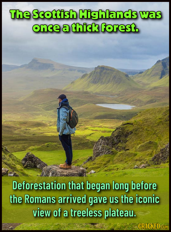 The Scottish Highlands was once a thick forest. Deforestation that began long before the Romans arrived gave us the iconic view of a treeless plateau.