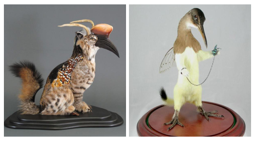 6 Ghastly Works of 'Art' Made from Dead Animals