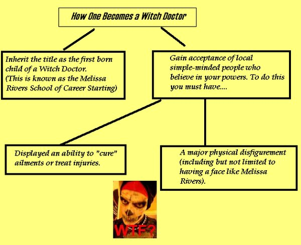 This Chart Explains Both How One Becomes a Witch Doctor and Also Why MS Paint Shouldn't Be Used for Charts